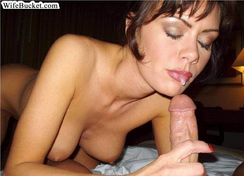 best wife blowjob