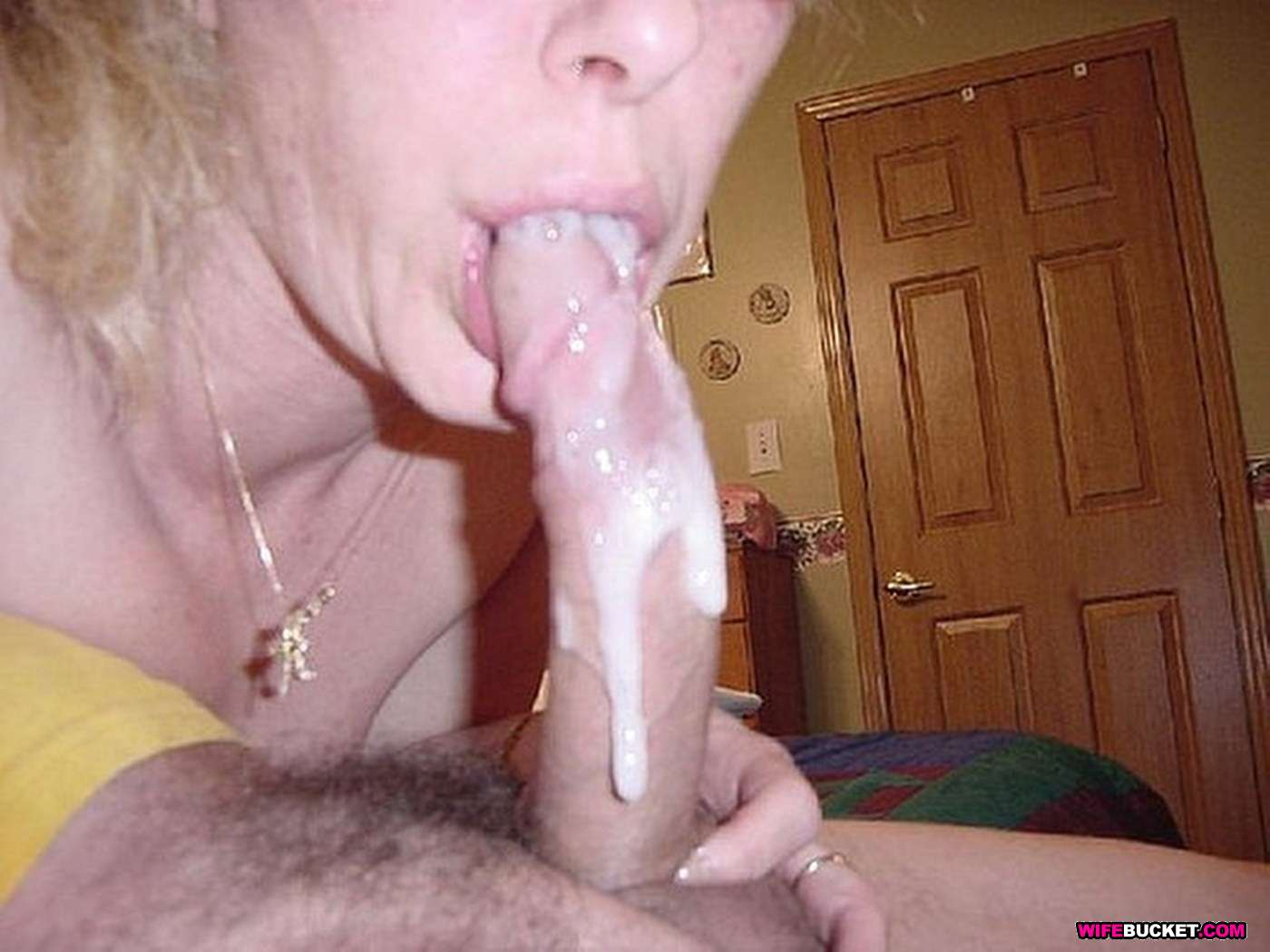 amateur wives oral creampie